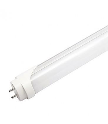 Tube Néon LED T8 - 600mm - 10W PROLINE