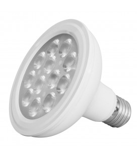 Ampoule LED - E27 - PAR30 - 12 W - SMD Epistar - Ecolife Lighting®