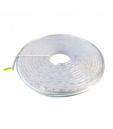 5 mètre de Ruban LED Bleu - 12V - 14,4W/metre - 60 LEDs/mètre - IP68 - SMD5050