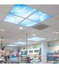 Dalle LED imprimée - Heaven - 600x600mm (Alimentation non fournie)