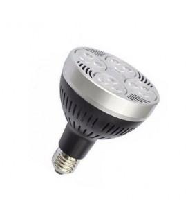 Ampoule LED E27 PAR30 - 35W - SMD Osram