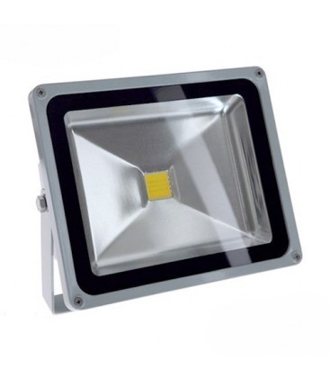 Projecteur LED Ecolife 12/24V DC - 30W - COB Bridgelux