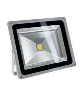 Projecteur LED Ecolife 12/24V DC - 50W - COB Bridgelux