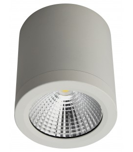 Spot Architecte LED saillie rond - 10W - COB